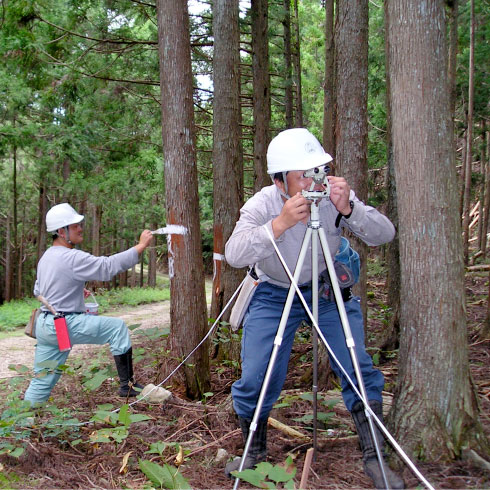 大紀森林組合   業務内容   森林...